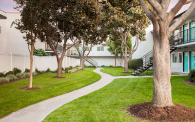Looking for Anaheim Apartments? Here's Why Villa Serrano Is the Perfect Choice