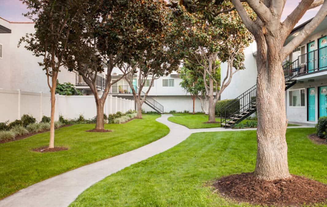 garden walkway with trees